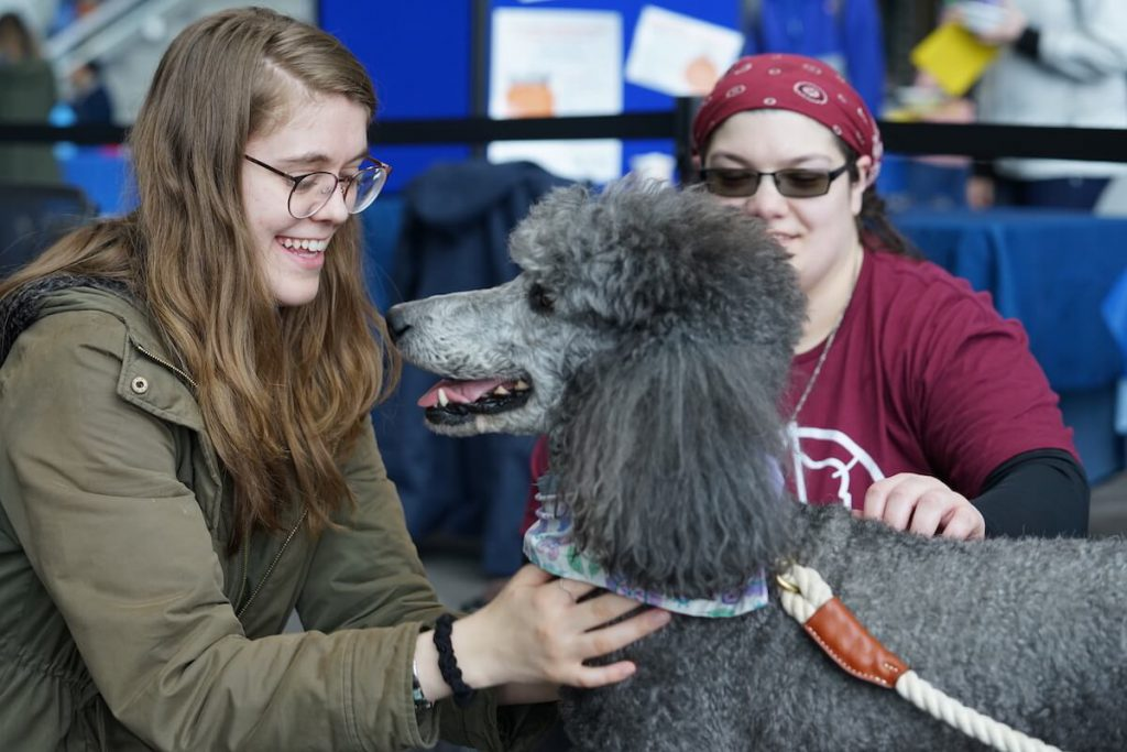 dog with students