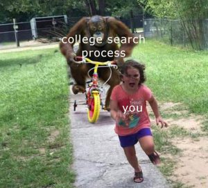 college search process gone wrong
