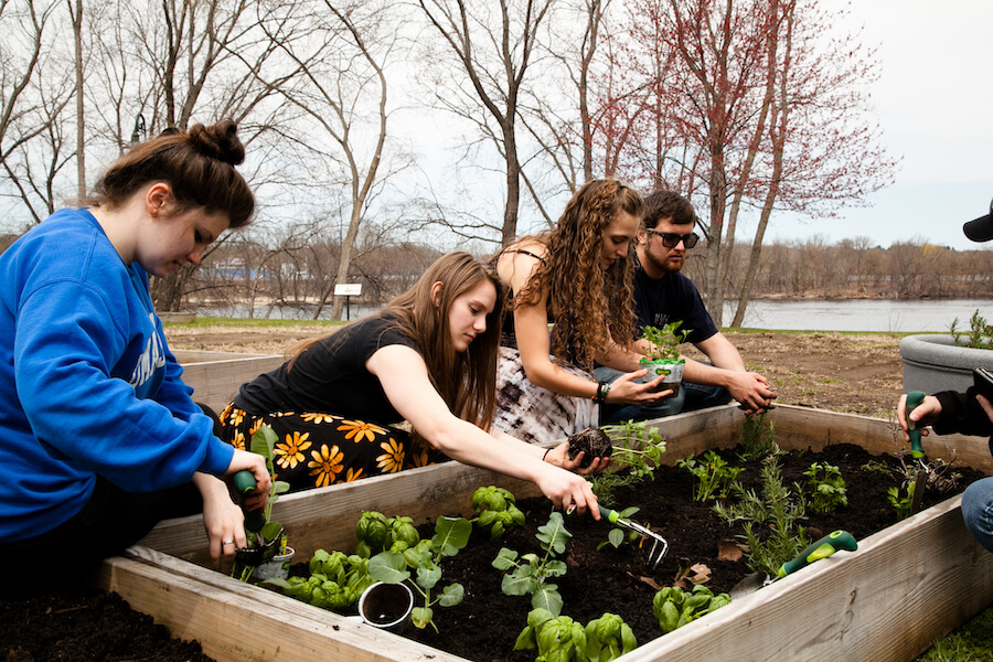 urban agriculture and sustainability at uml