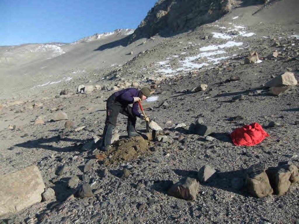 Mari excavating a pit, hoping there's ice below.