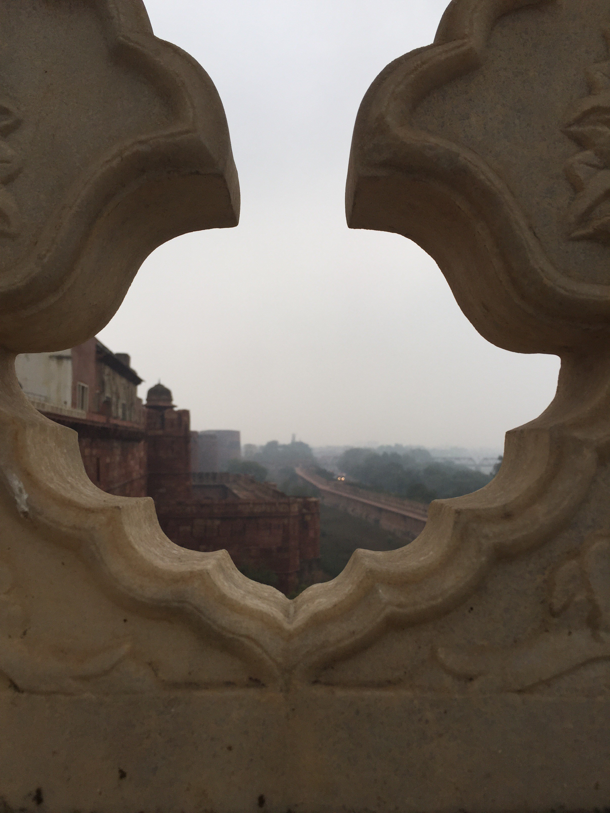 Peeking out at the Agra Fort