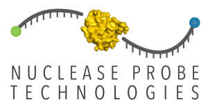 Nuclease Probe Technologies Logo